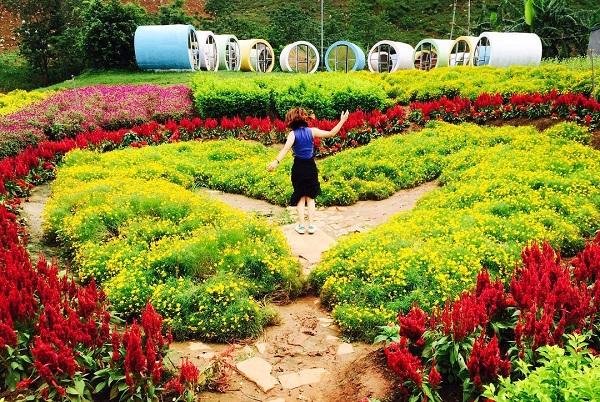 Mộc Châu Happy Land - homestay ở Mộc Châu hấp dẫn